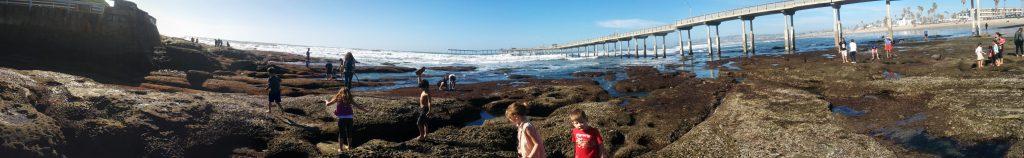 Tide Pools Ocean Beach